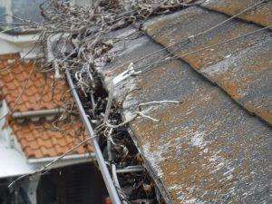 ツタの除去 塗装工事